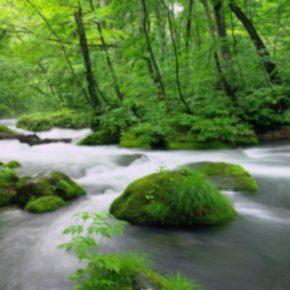 Regulacja rzeki Cedron