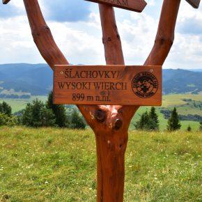 Wycieczka do Lasu Błędowskiego- mini fotorelacja